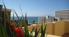 707.- Dos Dormitorios en Jardines de las Mercedes (Playamar-Bajondillo)
